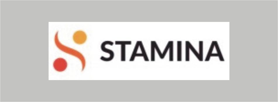 Buletin informativ STAMINA: ediția I